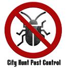 City Hunt Pest Control Logo